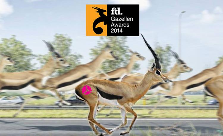 Award van FD voor Pinkcube