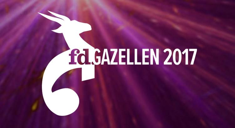 Pinkcube 4e jaar op rij FD Gazelle