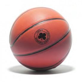 Basketbal Shot